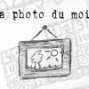 La Photo Du Mois * Transparence
