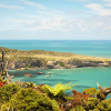 Nouvelle-Zélande Sud #6 : Punakaiki > Kaiteriteri