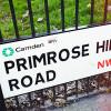 {Londres} Dominer la ville de Primrose Hill