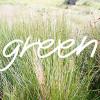 TOP 10 des astuces Green plutôt malines