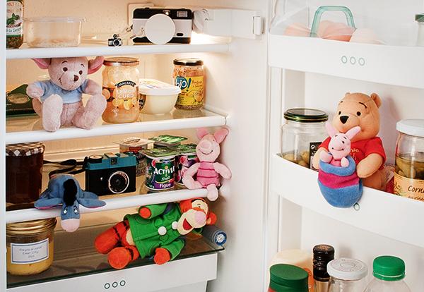 La photo du mois th me dans mon frigo reverdailleurs for 750g dans mon frigo