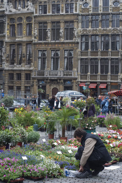 La Grand Place de Bruxelles et son marché aux fleurs