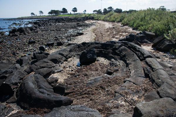 Lava blister ancien volcan hobsons bay melbourne