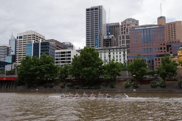 Entrainement aviron yarra river melbourne