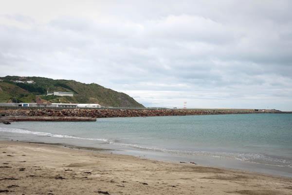 Aéroport sur l'eau à Wellington