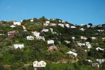 Vue des collines de Wellington - Nouvelle-Zélande