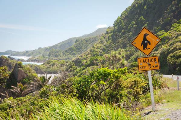 Cape Foulwind Nouvelle-Zélande