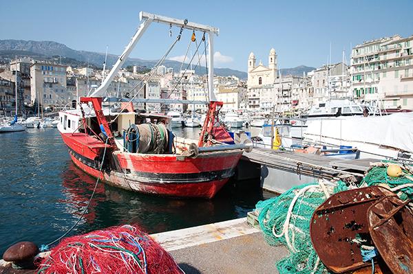 Les bateaux dans le port