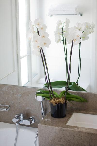Paris le boutique h tel la villa madame reverdailleurs for Orchidee salle de bain sans fenetre
