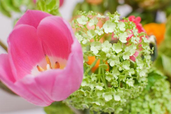 Zoom sur la tulipe et la boule de neige du bouquet