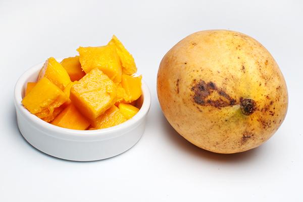 Mangue José de l'ile de la Réunion