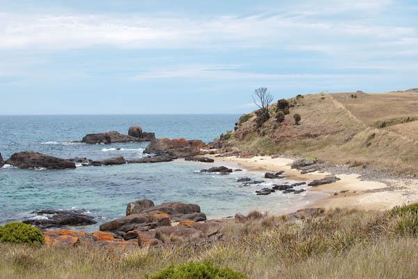 Spiky Beach en Tasmanie