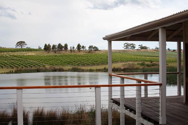 Milton Vineyard en Tasmanie