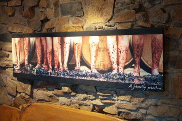 Tasmanie : La route des vins