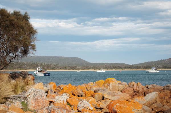 Coles Bay en Tasmanie