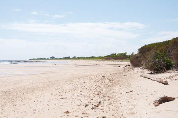 Ulverstone Beach tasmanie