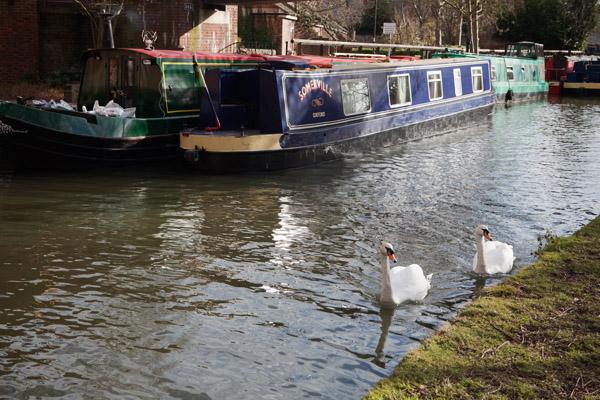 Balade en barque sur la Tamise