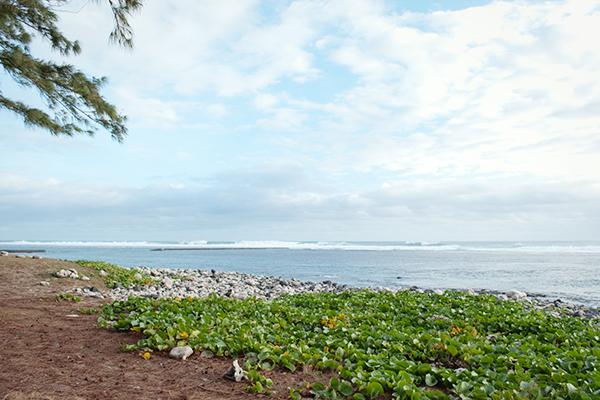Une plage de la Réunion en 2009