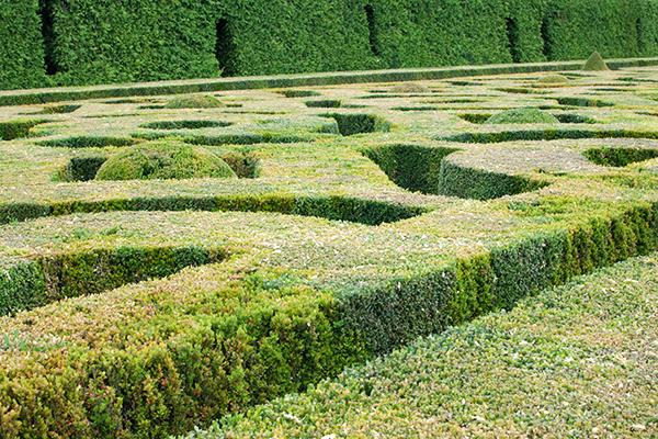 Jardins à la française Château de Hautefort