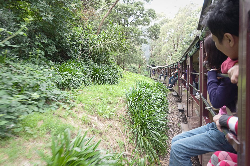 DSC_4566Puffing Billy train Melbourne