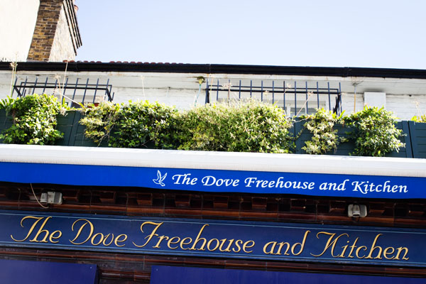 Pub The Dove FreeHouse & Kitchen