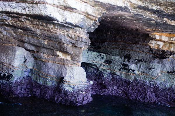 Gargano - Visite des caves