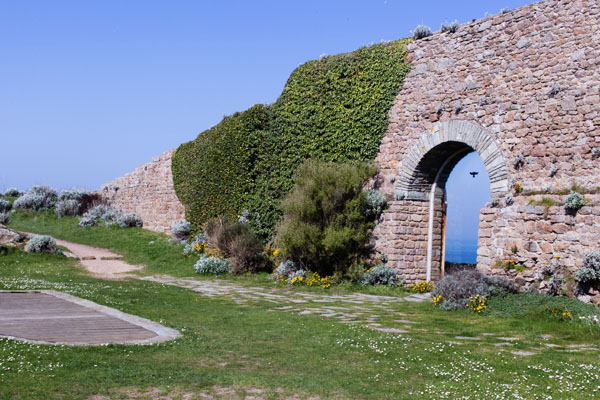 Fort du Cap Levy